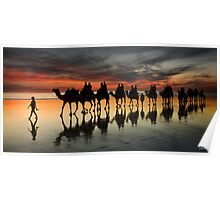 Cable Beach Camel Train Poster