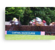 Equine Blur Canvas Print