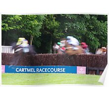 Equine Blur Poster