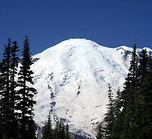 Mt Rainier, Washington by Loisb