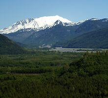 Mt St Helens, Washington by Loisb