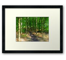 Step into the forest  Framed Print