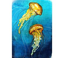 Dance of the Jellyfish Photographic Print