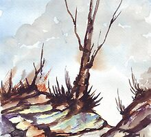 The Lonely Tree and the Donga by Maree  Clarkson