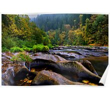 The Look Of Nature ~ Lower Lake Creek ~ Poster