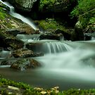 Little Andy Creek by Forrest Tainio