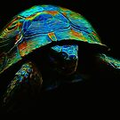 Inexpugnable Fractal Tortoise by Atılım GÜLŞEN