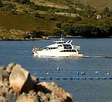 Cruiser at Killary Harbour, Ireland by JoeTravers