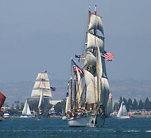 PARADE OF SHIPS by fsmitchellphoto