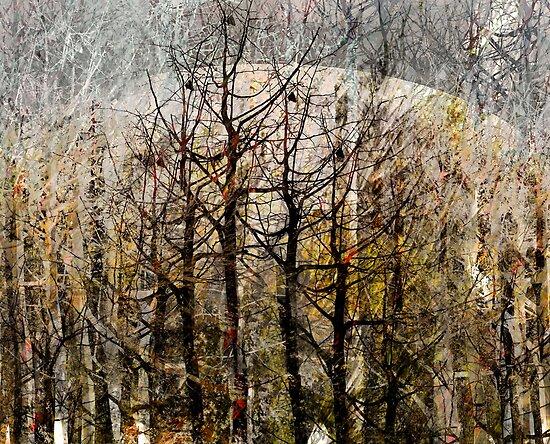 Birthing Fall, Winter Wings by linaji
