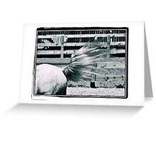Tailwind Greeting Card