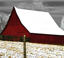 Red Barn In Winter by Cynthia Chronister