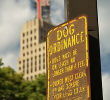 Instructions to Dog owners. by AlbertLake
