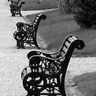Parked Bench by dawnandchris