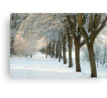 Winter Wonderland in Maynooth, Ireland. Canvas Print