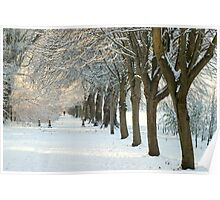 Winter Wonderland in Maynooth, Ireland. Poster