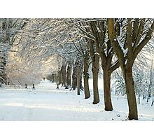 Winter Wonderland in Maynooth, Ireland. Photographic Print