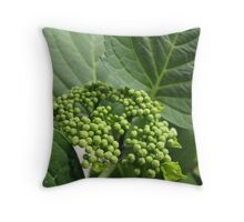 On it's Way... Throw Pillow