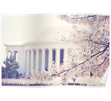 Cherry Blossoms at the Jefferson Memorial Washington DC Poster