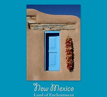 New Mexico Travel Poster by Heidi Hermes