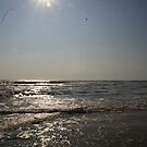Outer Banks Morning by Realms