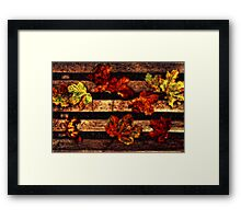 Leaves on a Bench Framed Print