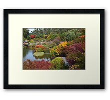 Autumn in Tasmania Framed Print
