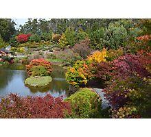 Autumn in Tasmania Photographic Print