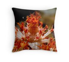 Soft Coral Crab, Papua New Guinea Throw Pillow
