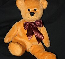 JR Bear's Brown Bow by aussiebushstick