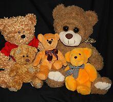 Teddy's Family Portrait by aussiebushstick