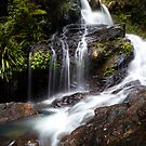 Bangalore Falls by Trish O'Brien