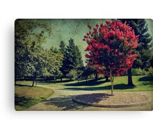 Bold and Beautiful Canvas Print