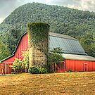 Tiger Mountain Winery&#x27;s Red Barn by Chelei