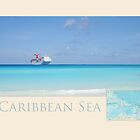 Caribbean Sea Travel Poster by Heidi Hermes