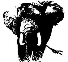 Elephant Pop Art Photographic Print