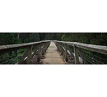 Walk way Neerim South Australia Photographic Print
