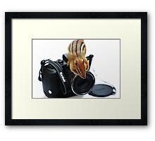 "Rule #1:   ""Always Remove The Lens Cap""... Framed Print"