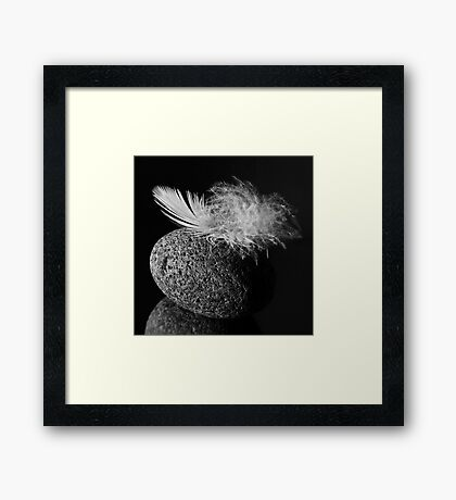 Oppositions of Nature Framed Print