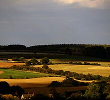 Evening Landscape - Oxfordshire, England by Reuben Vick