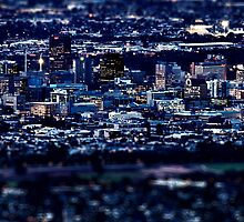 Big City Lights In Adelaide by zoomak