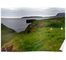 A typical Faroese landscape Poster