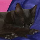 Black Cat Sleeping by Sarahbob