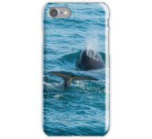 Orcinus Orca iPhone Case/Skin