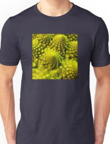 Fibbonaci Pattern in Romanesco brocolli T-Shirt
