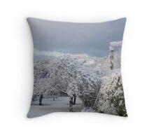 When The Snow Hit #1 Throw Pillow