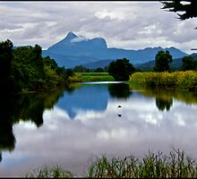 Mt Warning by Helenvandy
