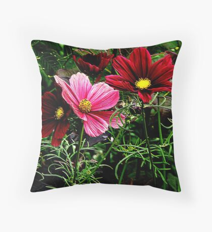 Cosmos in full Bloom Throw Pillow