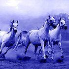 Horses Run to Freedom by madeinatlantis