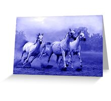Horses Run to Freedom Greeting Card